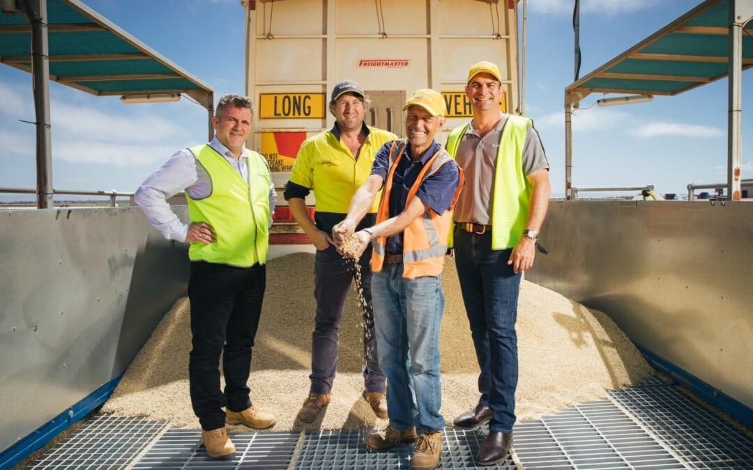 T-Ports receives first loads of 2020 season grain into Lucky Bay bunker site